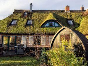 Utendørs trebastu for hage igloo design Timberin (3)