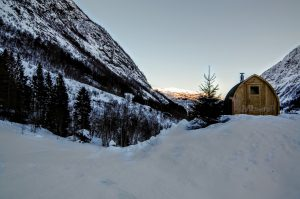 Utendørs trebastu for hage igloo design med fullt panoramavindue (5)